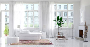 beautiful large white airy living room with plant and windows